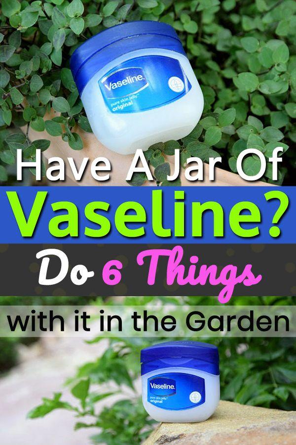 b4fa6c7819c783f7a8cc87aca109e989 How Do You Clean A Coffee Maker With White Vinegar