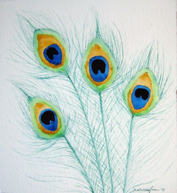 Peacock feathers watercolor painting