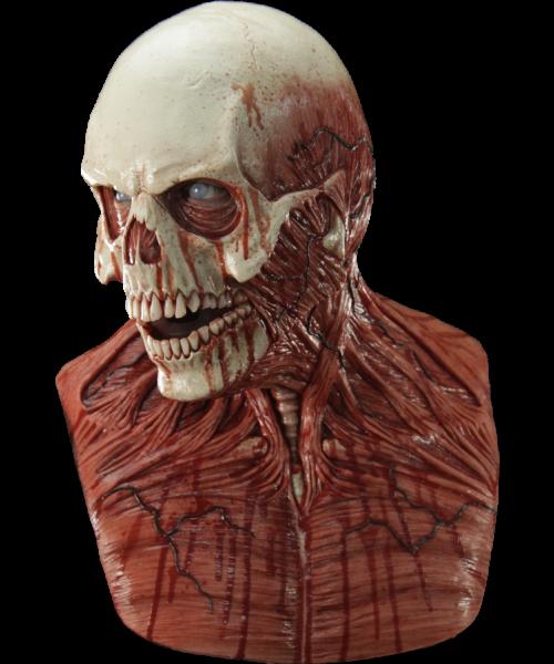Cover 500x600 Png 500 600 Skull Horror Skull Skull Mask