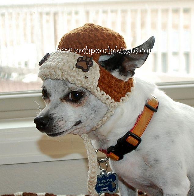 Aviator Dog Hat Bomber Dog Hat Pattern By Sara Sach Pinterest
