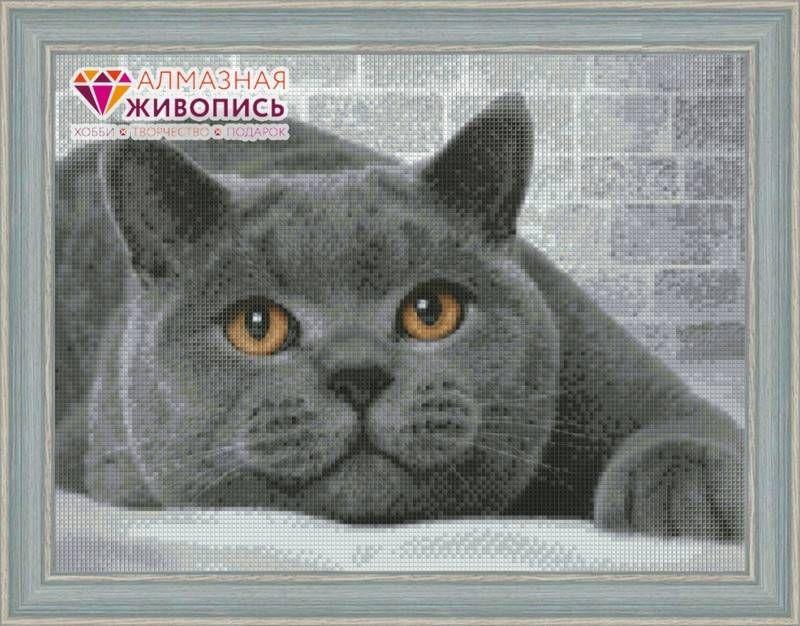 Вышивка британской кошки схема