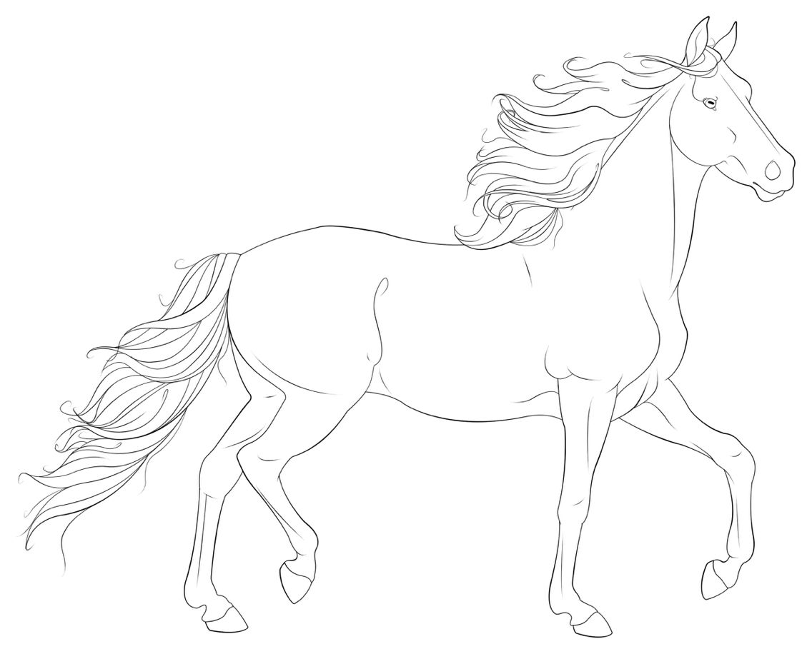 Lineart Horse Coloring Pages Horse Drawings Horse Coloring [ 916 x 1136 Pixel ]