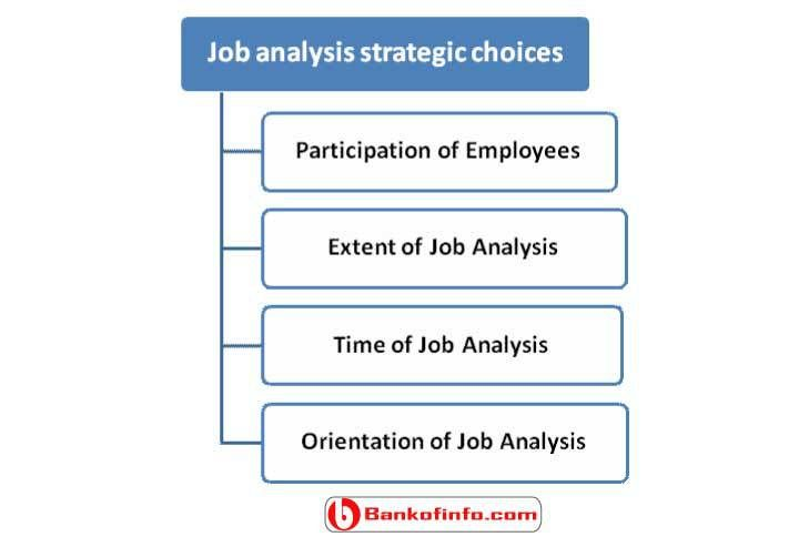 Job Analysis Strategic Choices For Human Resource Management