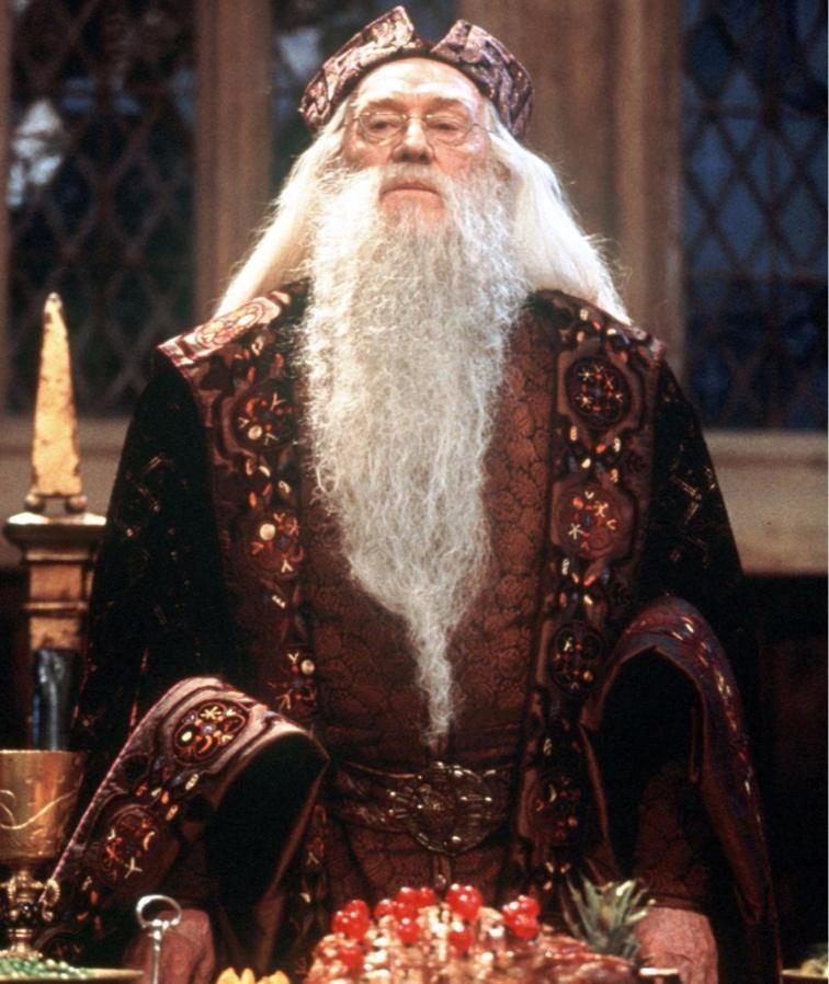Professor Snape Der Zauberminister Schon Neun Harry Potter Stars Sind Tot Harry Potter Kostum Rowling Harry Potter Harry Potter Film