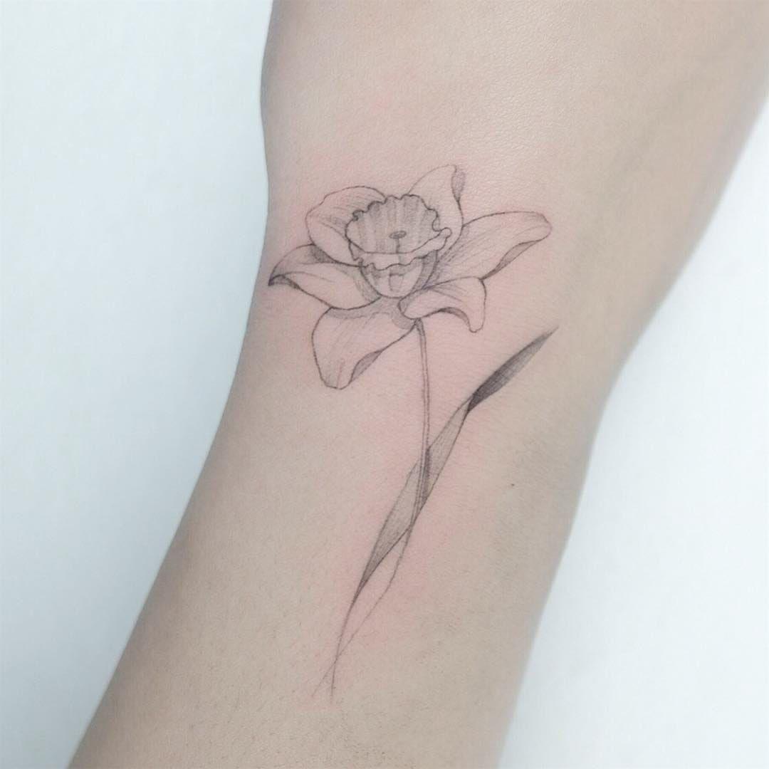 Pin by Blair Sportello on Tattoos in 2020 Daffodil