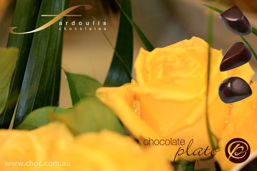 Yellow sings the song chocolate adds to the ambience choc yellow sings the song chocolate adds to the ambience mightylinksfo