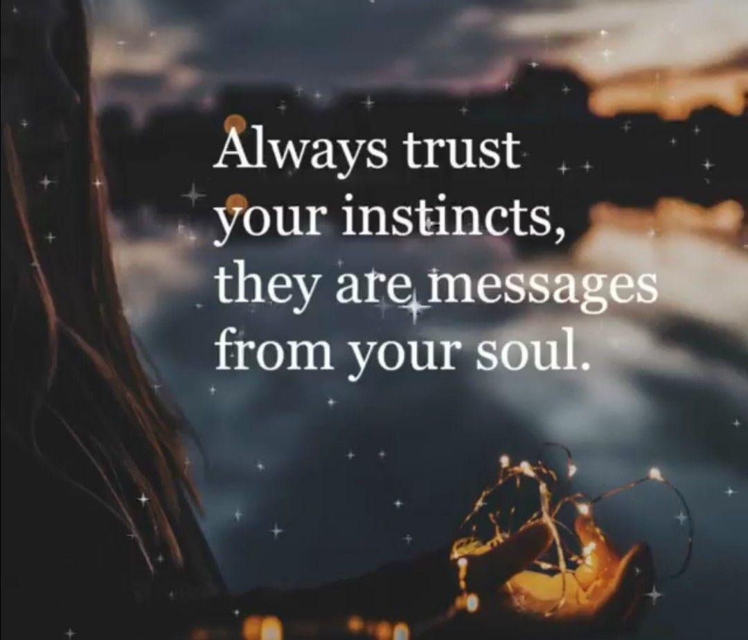 Always Trust Your Instinct Instinct Quotes Inspirational Quotes Motivation Spirit Quotes