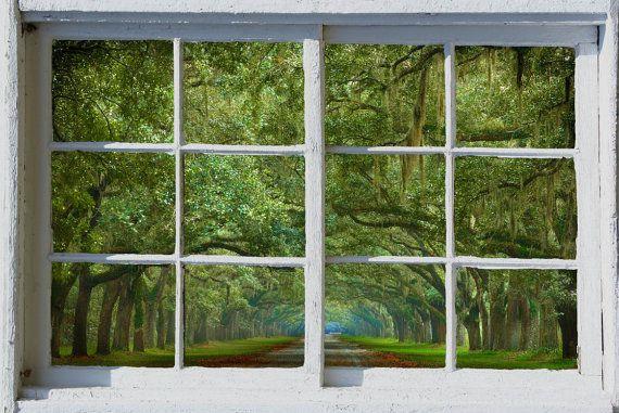 Wall mural window self adhesive Savannah Live Oak Alley white
