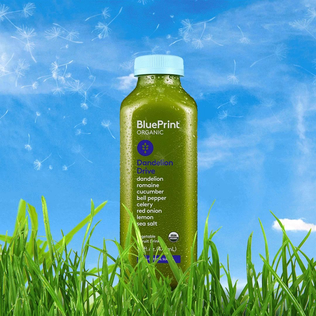 Meet your new go to juice blueprint dandelion drive packed with meet your new go to juice blueprint dandelion drive packed with 8 delicious organic ingredients and boasting only 10 grams of plant based sugar malvernweather Image collections