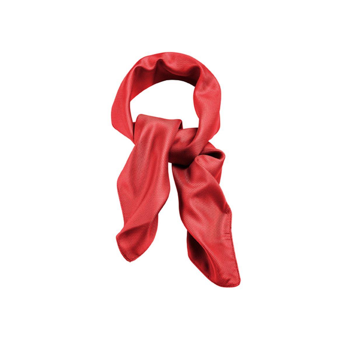 d2b63230d61f Foulard uni Femme 6901 est un accessoire de vêtement de travail classe, c  est la spécialité de SPIQ. Retrouvez d autres modèles sur spiq.fr