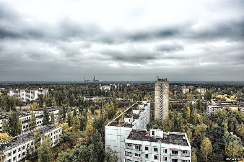 Chernobyl+Today | Chernobyl - Prypiat - Wildlife