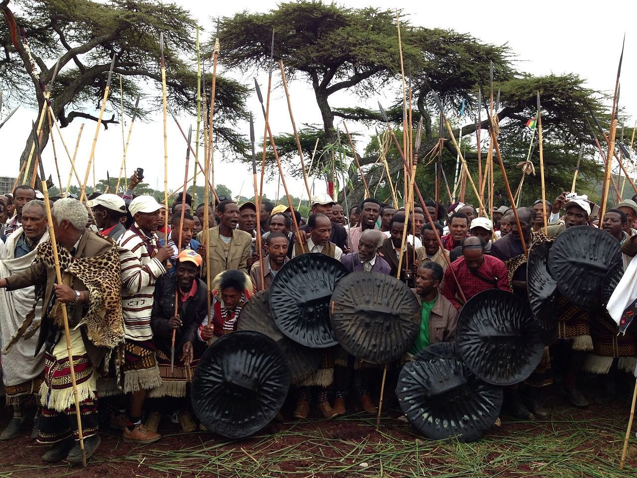 Sidama New Year Celebrated