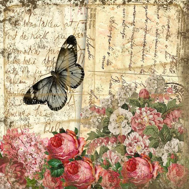 Бабочки винтажные картинки