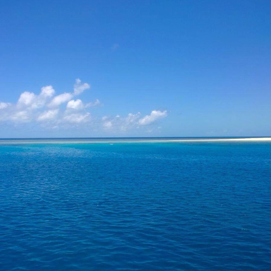 Great Barrier Reef #AgincourtReef #CalypsoCruise #snorkelling #greatbarrierreef  by __alisara http://ift.tt/1UokkV2