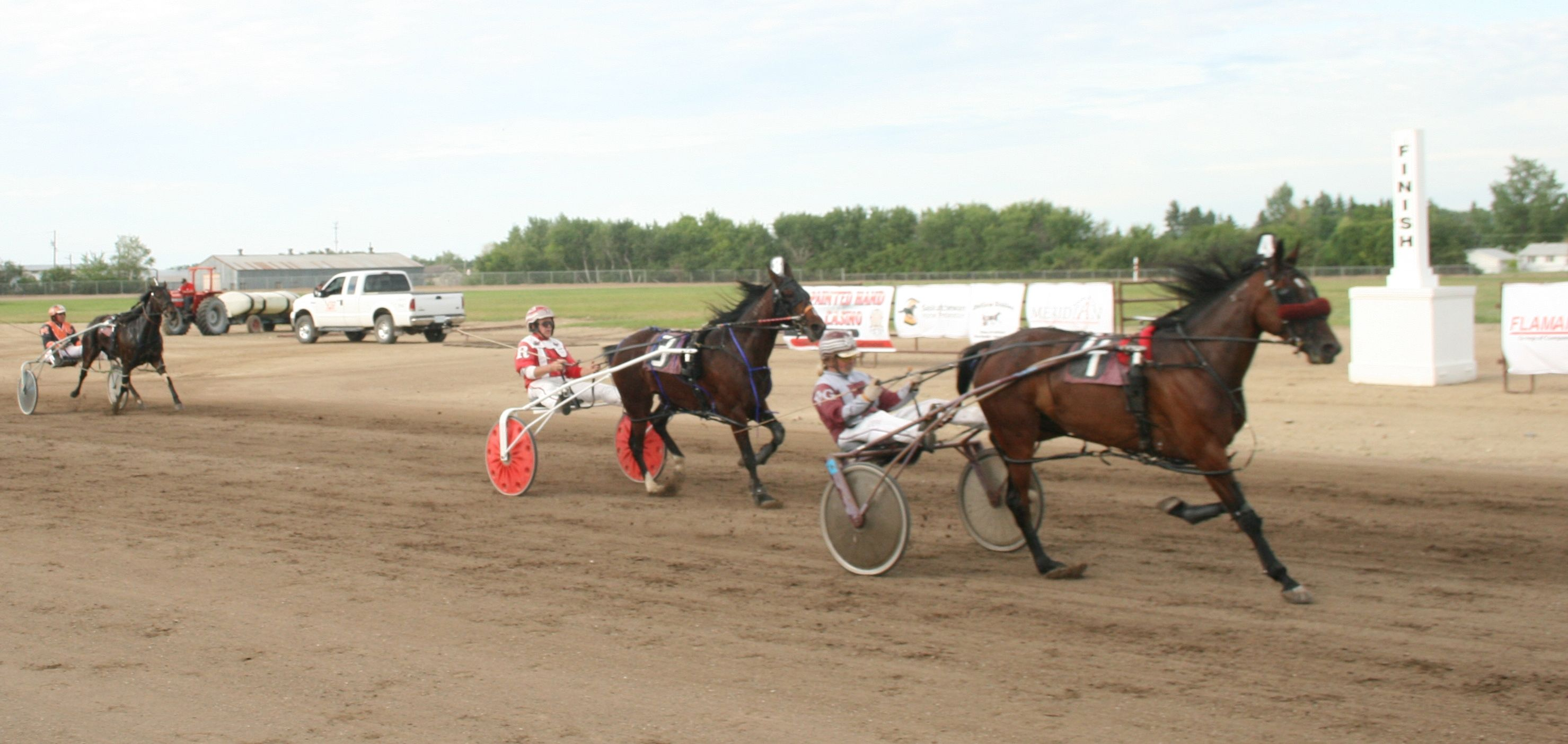 Pin by vanessa on harness racing pinterest harness racing