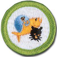 Merit Badge Requirements Boy Scout Badges Boy Scouts Merit Badges Scout Badges