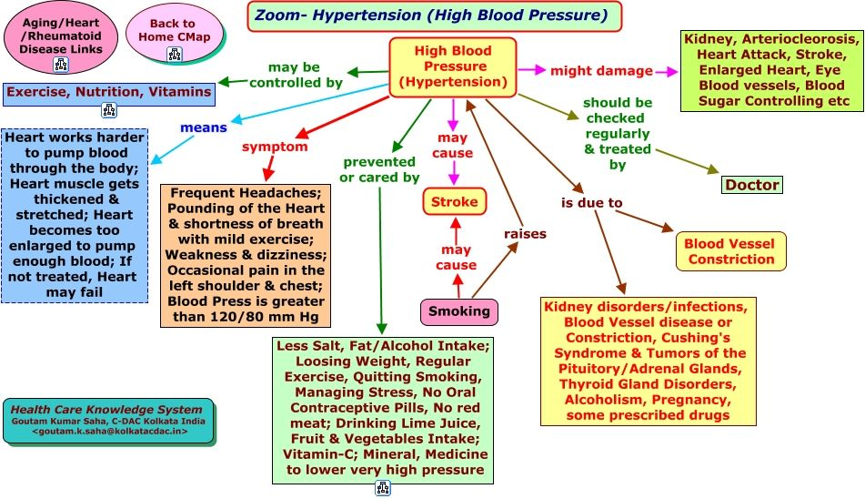 Hypertension Concept Map Hemodynamics Concept Map Nursing Concept