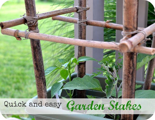 Diy Tomato Stakes Out Of Bamboo Bamboo Diy Easy Garden 400 x 300