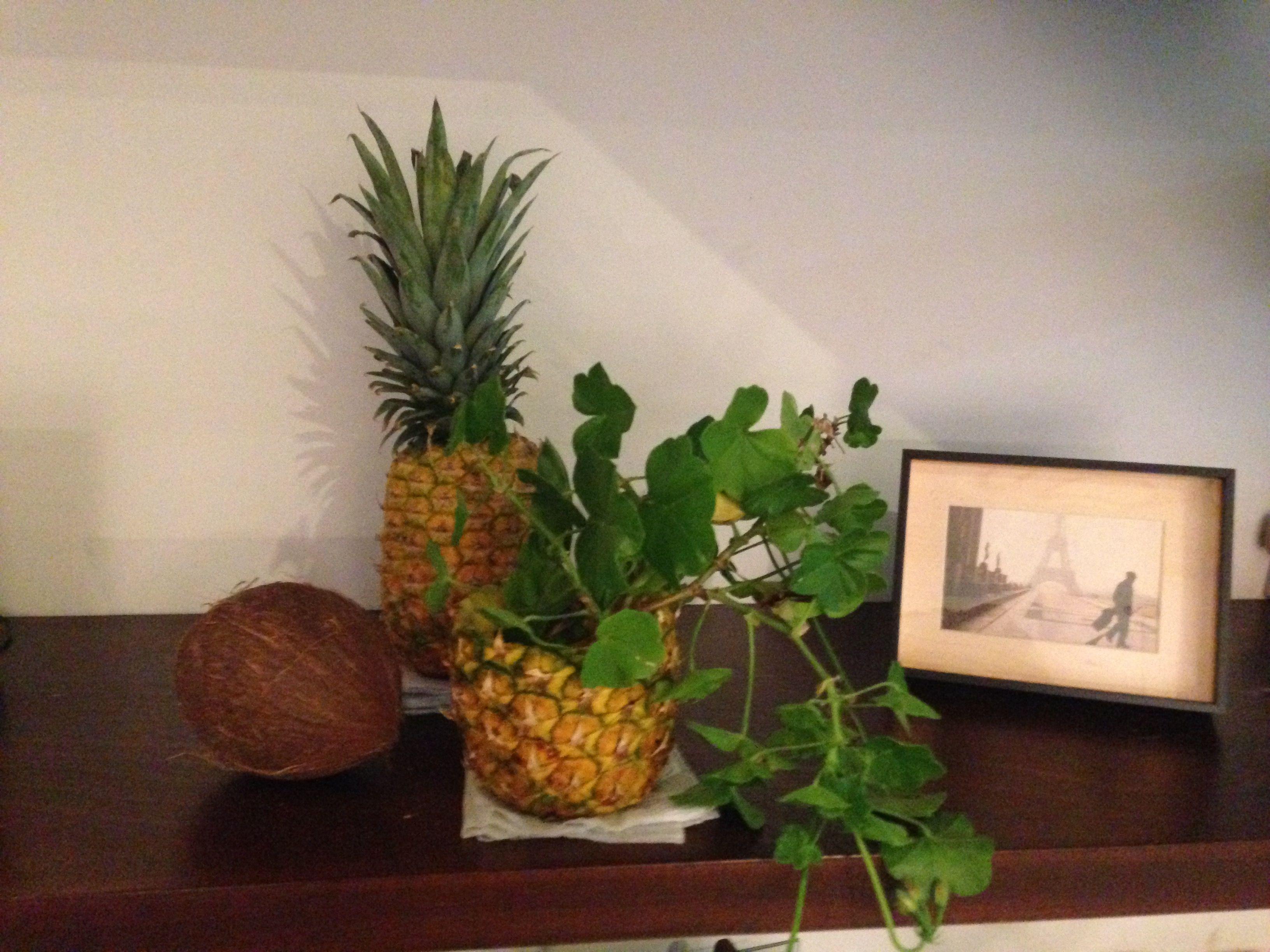 DIY - pineapple vase