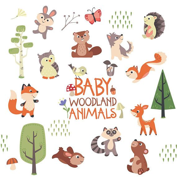 Cute Baby Woodland Animals Transparent Background Clip Art Forest Illustration Forest Animals Children And Baby Room Decoration Baby Shower Woodland Animals Animal Clipart Forest Illustration