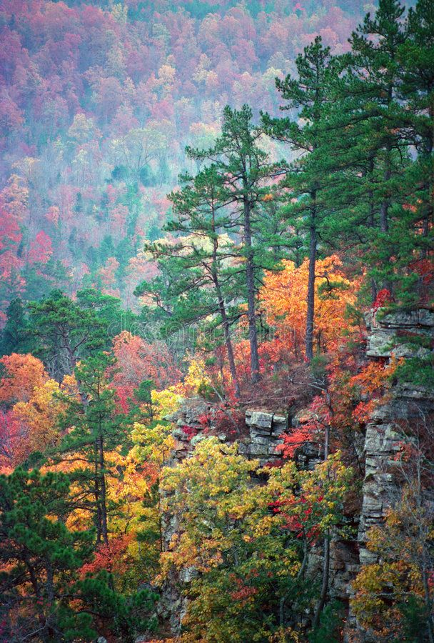 Ozark Color. Fall color in an Arkansas valley overlooked