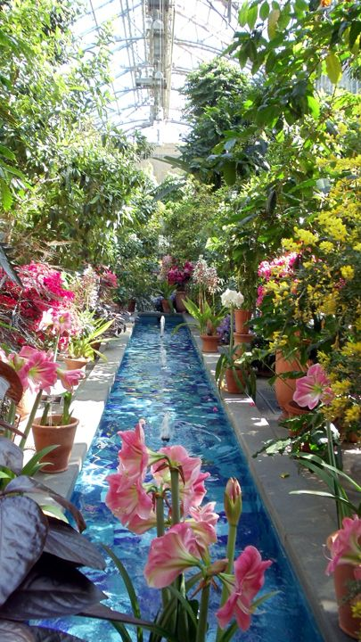 National botanical garden washington dc botanical garden conservatories in 2018 pinterest for Botanical gardens dc christmas