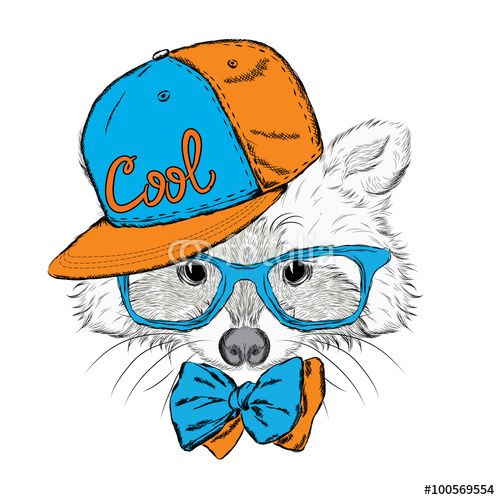 Vektor: Raccoon vector. Raccoon in a cap and a tie. Raccoon clothing. Honey Raccoon . Hipster. Card with animals.
