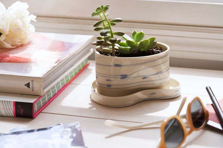 <p>This porcelain set will have you playing fast and loose with your plant purchases—'cause wouldn't a cactus look cute in it? But also some kitchen herbs, or, ooh, even some creeping ivy? Please send our congrats to whichever lucky winner gets to take root.</p>