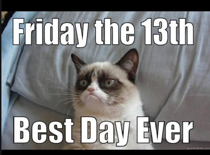Grumpy Cat Friday the 13th, Best Day Ever!! in 2020