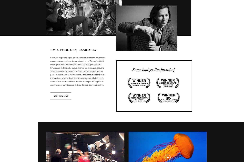 Reel Story Portfolio WP Theme (With images) Wp themes