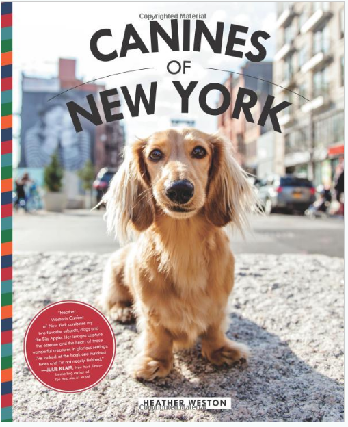 Canines of New York Hardcover October 10, 2017 by