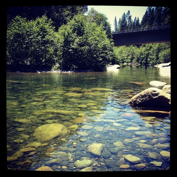 Go Swimming At Oregon Creek Middle Fork Of The Yuba River