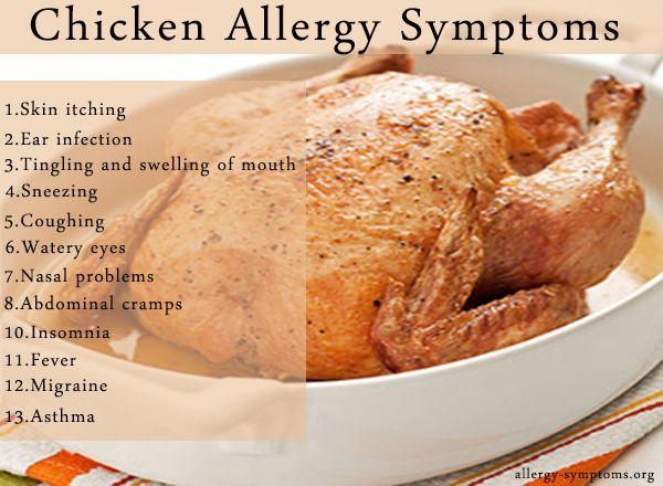 Chicken Allergy Health Allergies Allergy Symptoms Food Allergies