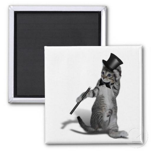 sold ! Tap Dancing Cat Refrigerator Magnet  shipping to Jamestown, NY #caturday #tapdancing