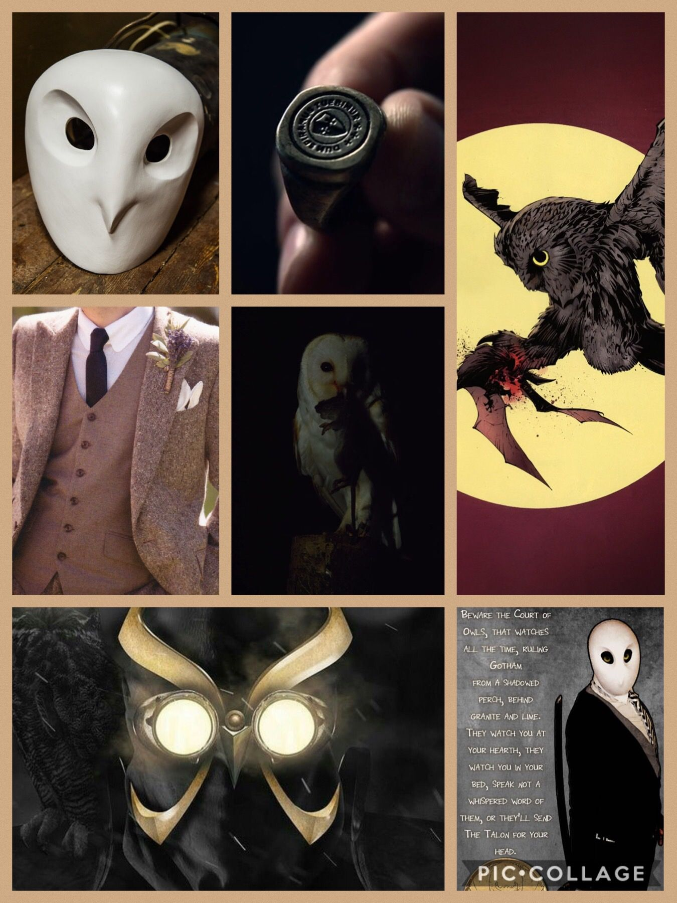 The Court Of Owls Aesthetic Court Of Owls Owl Wallpaper Character Design