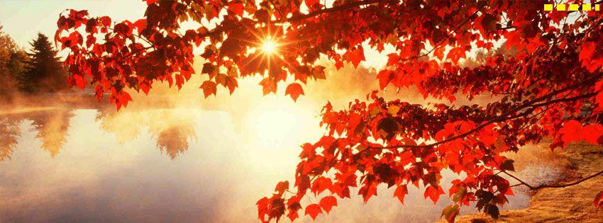 bible verse facebook cover autumn - Google Search   Facebook Cover ...