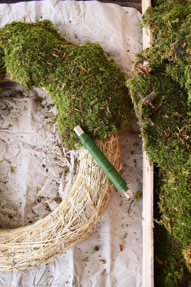 Photo of DIY moss wreath. Just do it yourself. Wreath of moss for Christmas and Advent …