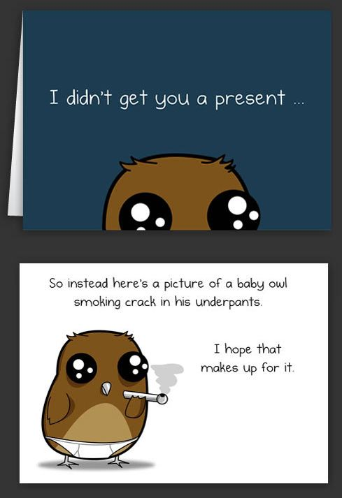 482c0a18 Since I didn't get you a present… | Funny Ass shit! | Birthday cards for  brother, Funny, Baby owls