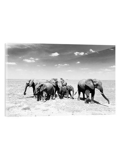 Elephant Herd (Framed Plexiglass) by Two Palms Art Bazaar at Gilt ...