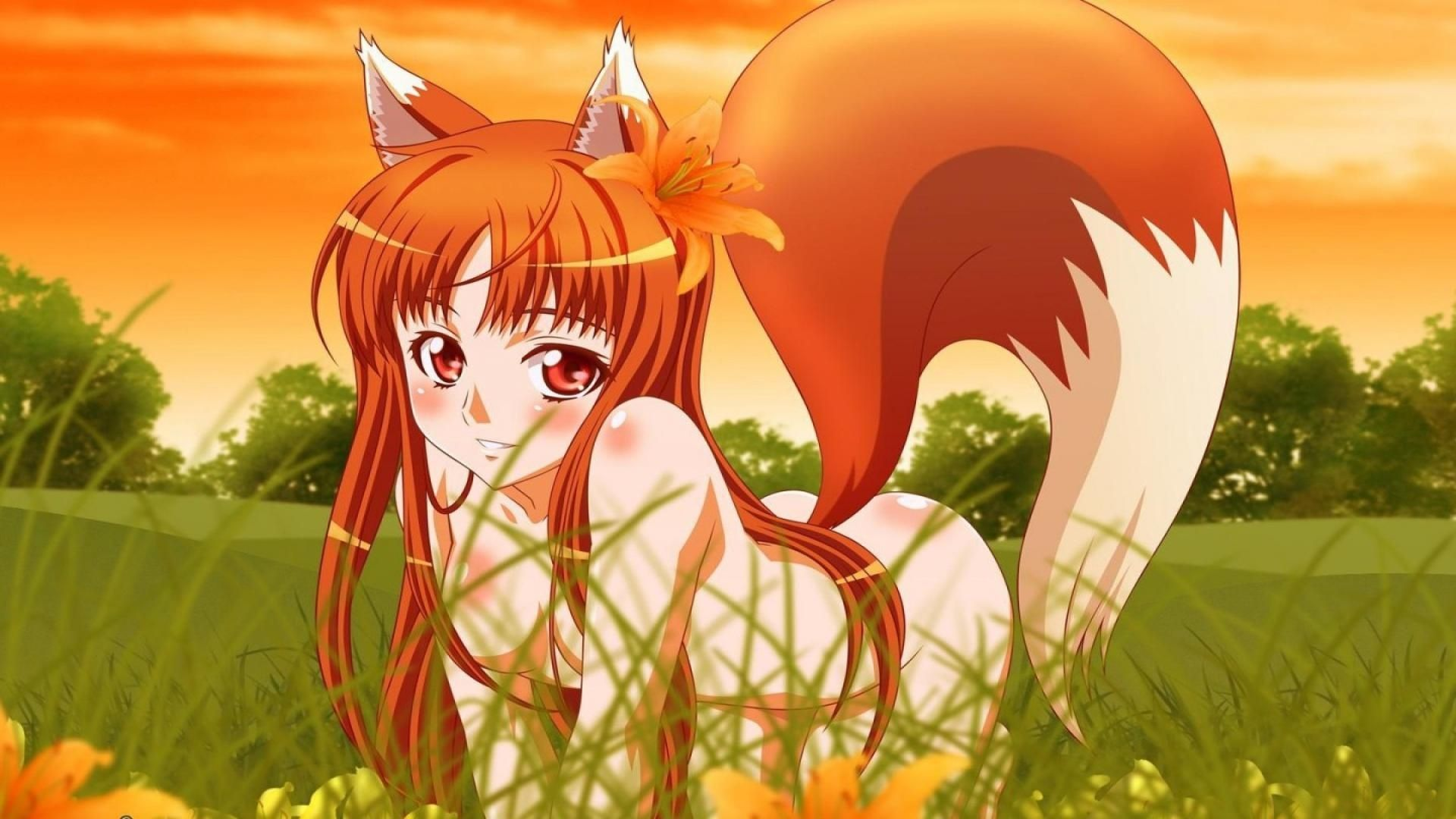 Fox Cute Anime Wolf Girl Wallpaper