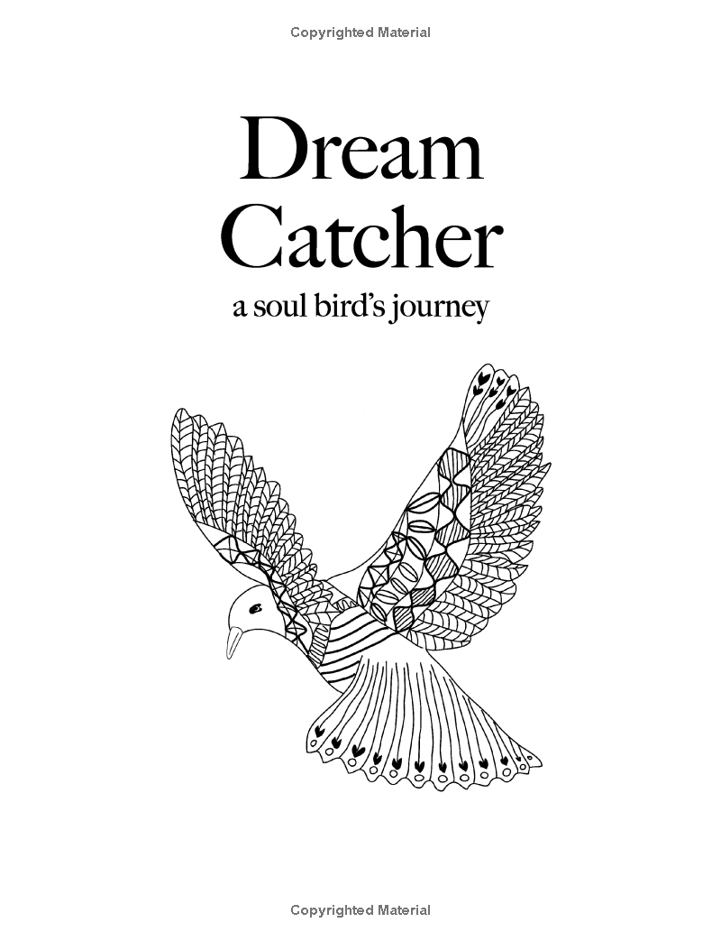 Dream Catcher: a soul bird's journey: A beautiful and inspiring colouring  book for all ages: Christina Rose: 9781909855724: Amazon.com: Books