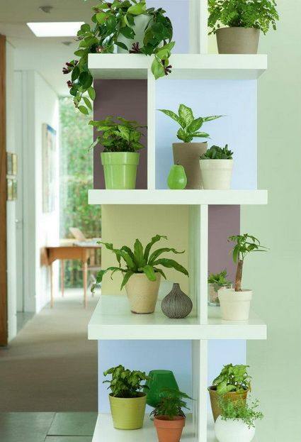 ideas para decorar interiores con plantas plant shelves