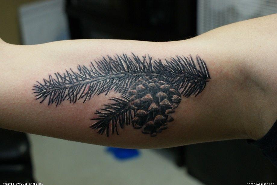 Pine branch tattoo tattoo me pinterest branch tattoo for Ponderosa pine tattoo