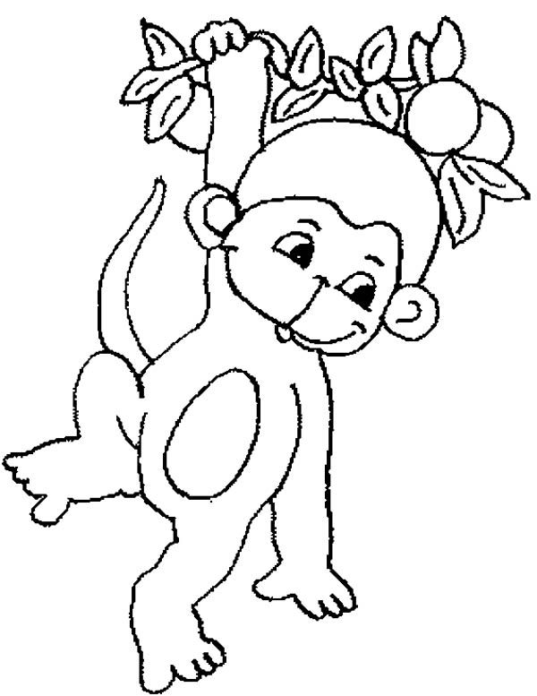 Monkey, : Cute Baby Monkey Hanging On Tree Coloring Page For Kids