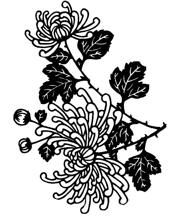 Chrysanthemum: Chrysanthemum in Flower Arrangement Coloring Page ...