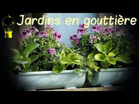 Idées jardins en gouttières
