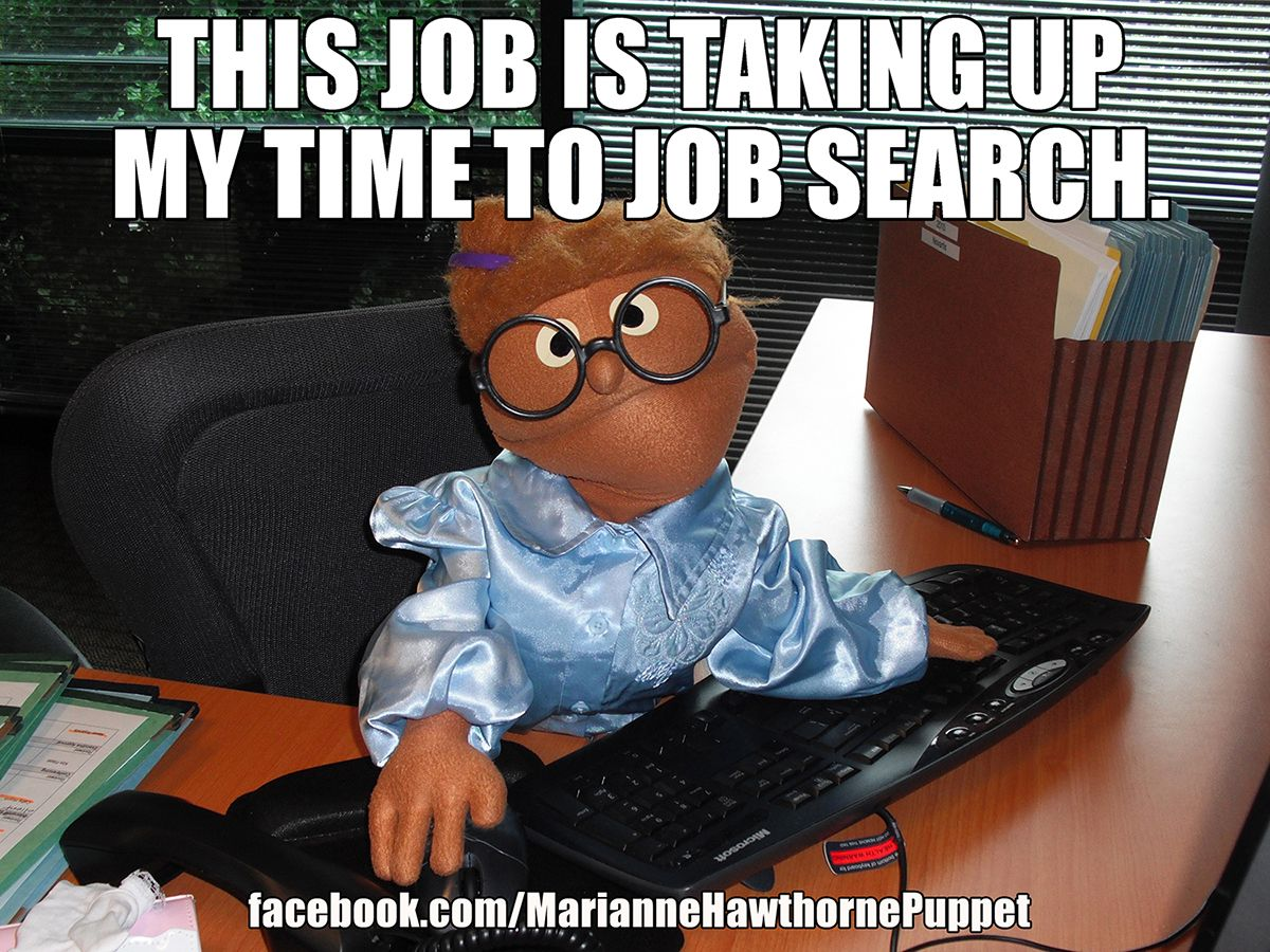 Funny Cartoon Office Meme : This job is taking up my time to job search. office comedy funny co