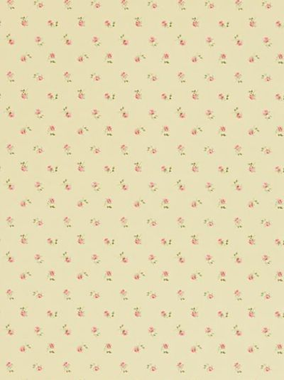 Buy Sanderson Libby Rose Wallpaper Buttermilk WR8518 1 Online At JohnLewis