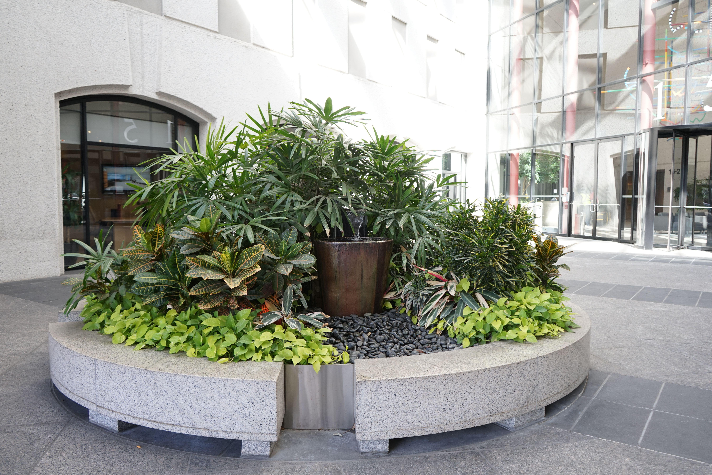 Landscaping Maintenance Plants Garden Services Landscape Solutions