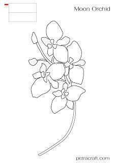 งานฝ ม อ ดอกไม อาเซ ยน By Petracraft Com Moon Orchid Indonesia แพทเ ร นป กผ า งานฝ ม อ งานฝ ม อ Diy